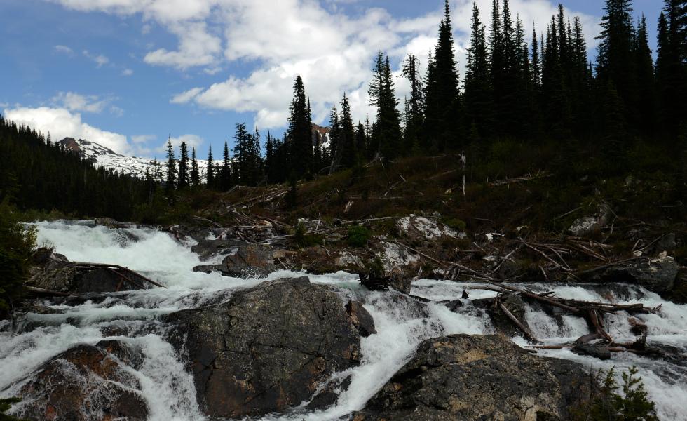 Visit Monashee Provincial Park